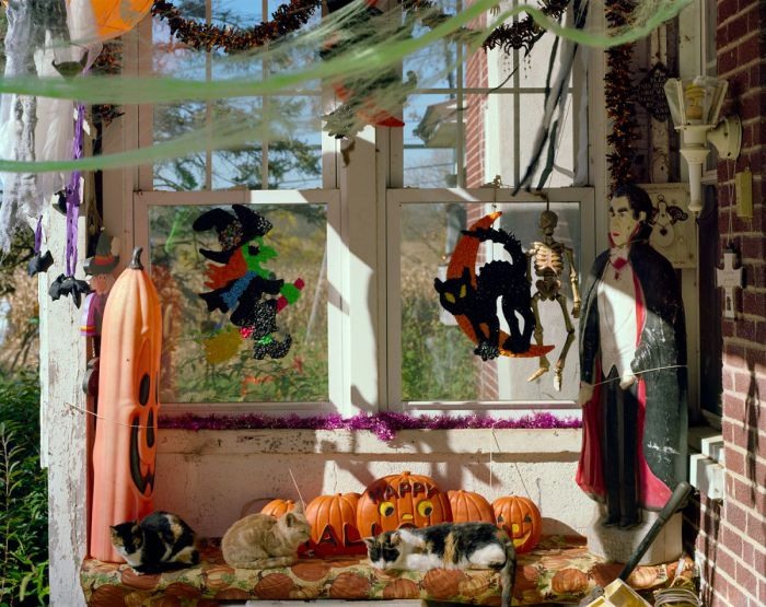 Celebrating Sarah—Halloween, 20-1310-07, Archival Pigment Print—8x10, 16x20, 32x40, 40x50