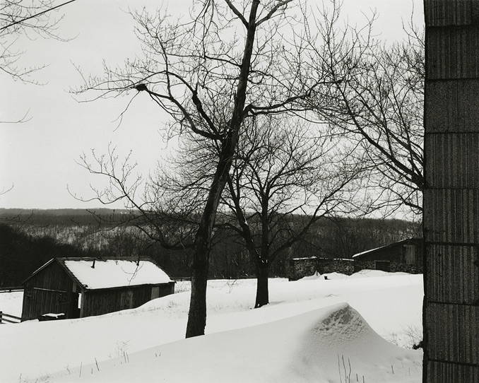 Near Frenchtown, New Jersey, 1970, 1-7002-02, 8x10 gelatin silver chloride contact print