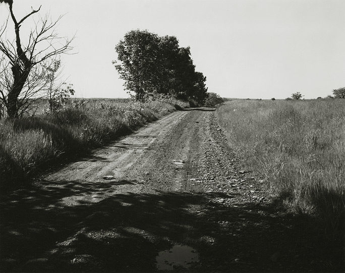 Near Frenchtown, New Jersey, 1971, 81-7108-02, 8x10 gelatin silver chloride contact print