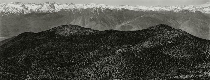 "From Bristlecone Pine National Monument, California, 1982, 82-8205-38, 8""x20"" gelatin silver chloride contact print"